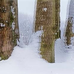 Het wintergevoel.....