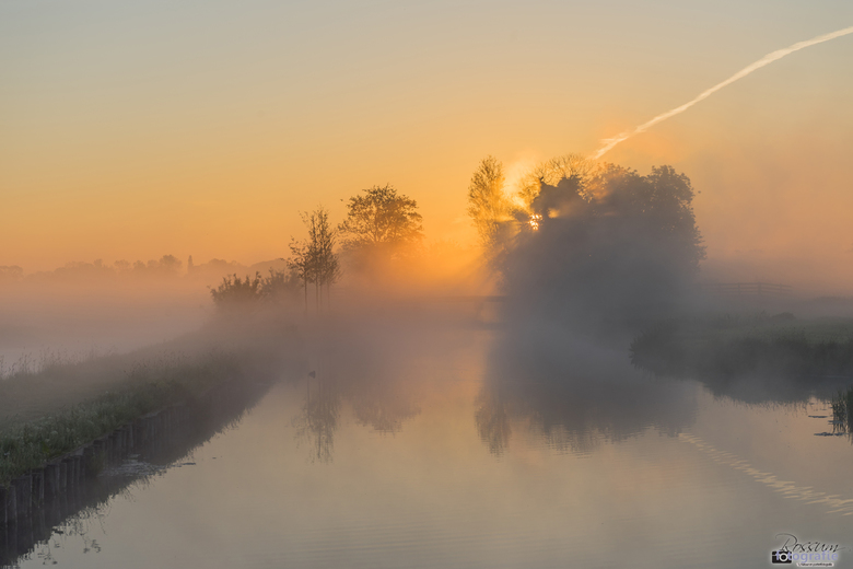 Beautiful Moments in the Polder -