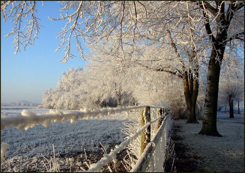 Binnenmaas met  sneeuw - Het was een plaatje.