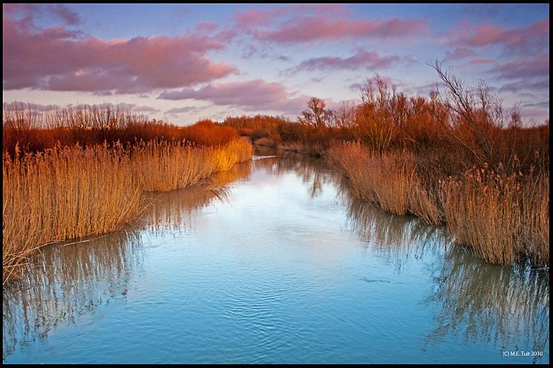 De kreek - Deze foto is genomen in een lokaal natuurgebiedje in Barendrecht bij de Oude Maas, genaamd de Carnisser grienden.