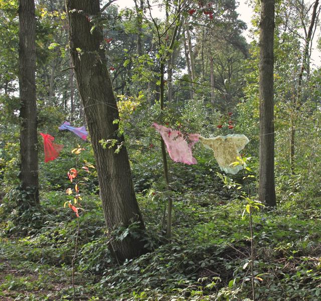 van bewoners in het bos - wie, o wie hangt haar was te drogen...