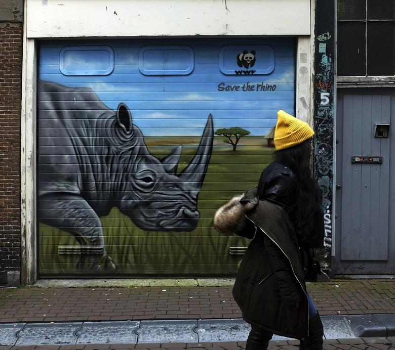 save(only) the rhino - eventueel groot zien <br /> <br /> en een stukje stads natuur en haar tas van (nep)bont<br /> <br /> <br /> dank voor waar