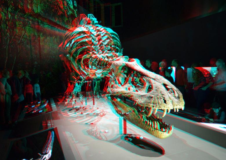 T-Rex Naturalis Leiden 3D - DT-Rex Naturalis Leiden 3D