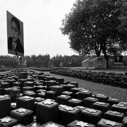 Westerbork 4