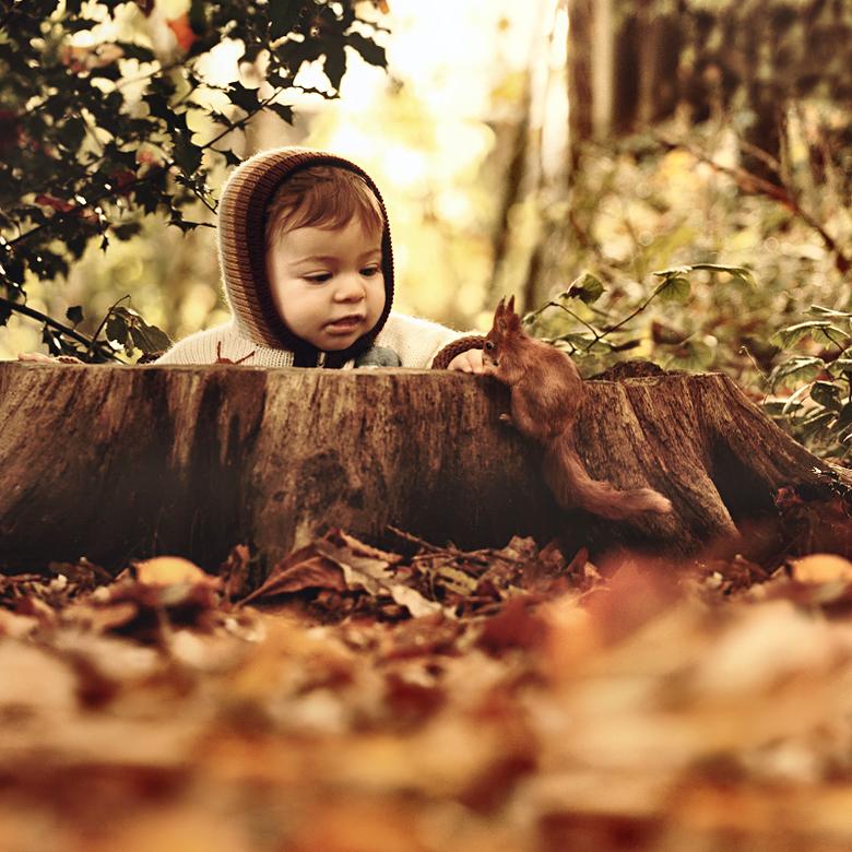 Ontmoeting  - Hallo daar klein vriendje!<br /> Ben je op zoek naar wat nootjes voor de winter? Nee sorry ik heb niks in mijn hand..