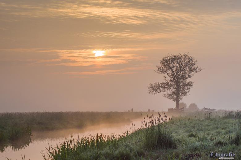 Zonsopkomst in de polder -