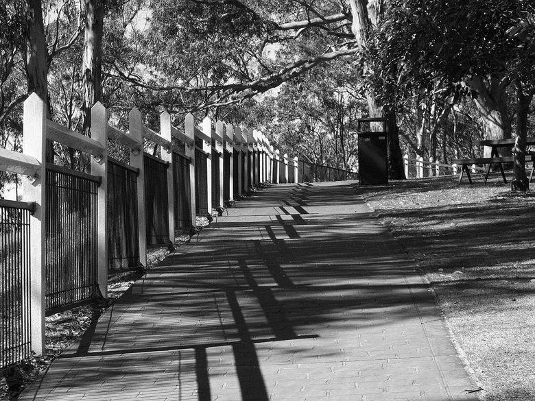 Fence - Hekwerk met schaduw langs wandelpad.