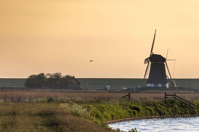 De molen van 't Noorden, tijdens zonsopkomst.