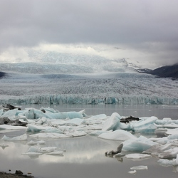 IJsbergenmeertje IJsland