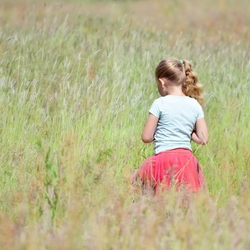 In the tall, tall grass..