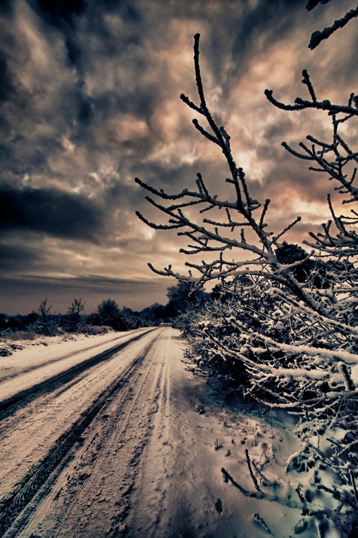 Dark times - Op het randje van de weg op de Holterberg waar alle sneeuw nog een beetje wil blijven liggen