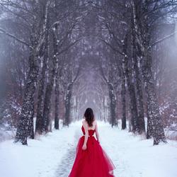 Magische sneeuwwereld