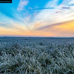 Sunrise cold