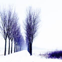Winter 2013-01