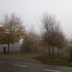 mist in Moerdijk 1