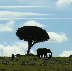 Horizon in Kenia