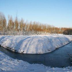 Winter in Albrandswaard