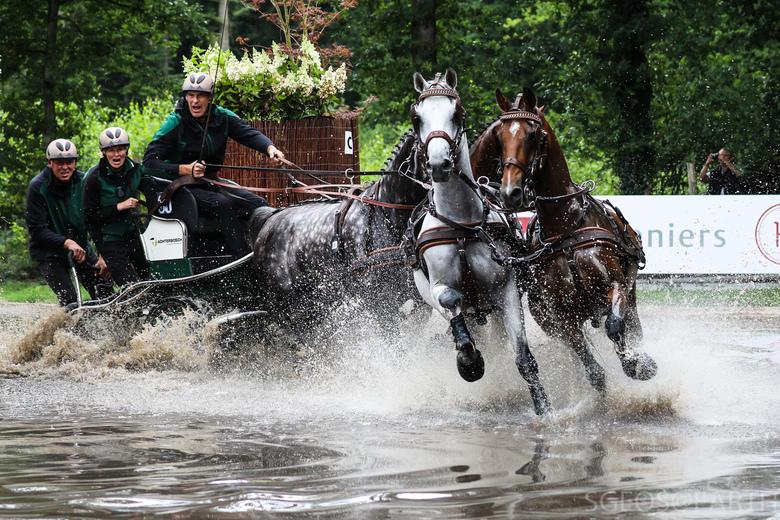 Actie in de waterbak - Marathon vierspan - Foto genomen tijdens het internationale paardenspektakel in Beekbergen. Met name de expressie van de berijd