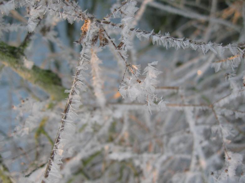 ijskristallen 02 verkleind.jpg