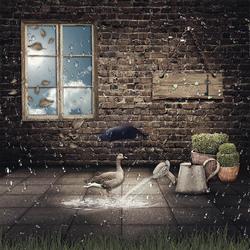 Bewerking: Rain Over Me ...