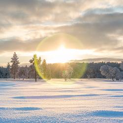 Sneeuwflare