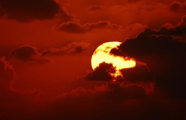 Zonsondergang - Ik ben vanavond even snel heen en weer gereden naar het Slufter strand voor deze foto.<br /> <br /> Nikon D200<br /> Sigma 500mm 4.