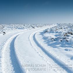 Sneeuwlandschap Terletse Heide