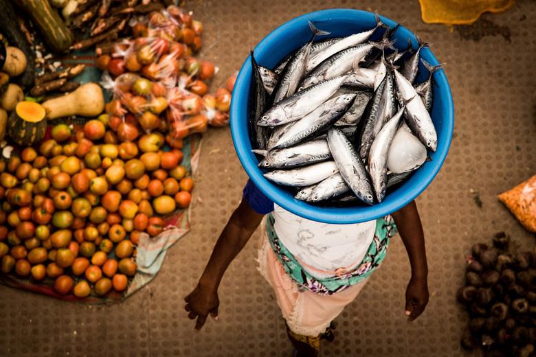 Catch of the day - Vangst van de dag op de lokale versmarkt in Kaapverdië.