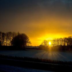Zie de zon schijnt door de bomen.