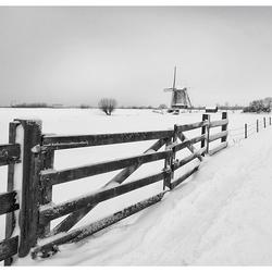 Winter Kinderdijk
