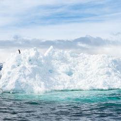 Welcome in Antarctica
