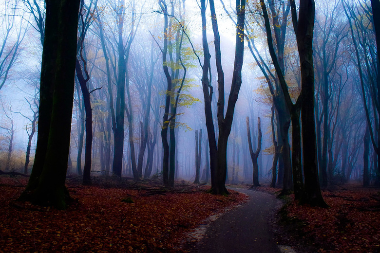 Magische mist -