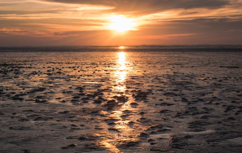 Wadden Zonsondergang - Genieten van de prachte omgeving en een hele mooie zonsondergang te Wierum.