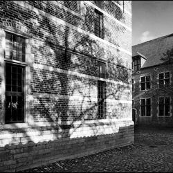 Leuven 2012-21