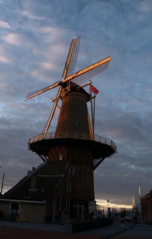Molen de Roos Delft -