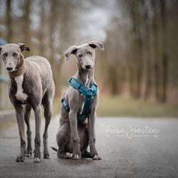 Hailey & Mila