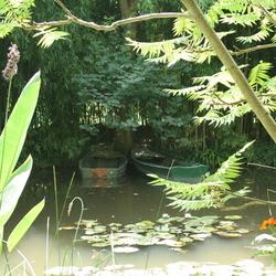 Bootjes van Monet