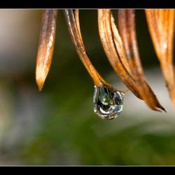 Melting drops