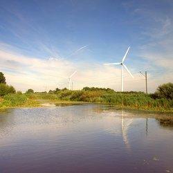 In de polder nr2