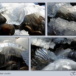 ijskoude natuur creatie's