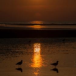 zeeuwse zon