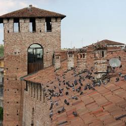 museumvecchio (1023).jpg