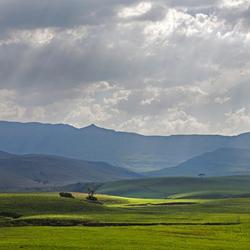 Zuid-Afrika 235
