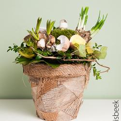 Voorjaarsbloemwerk