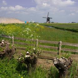 Tsja Holland