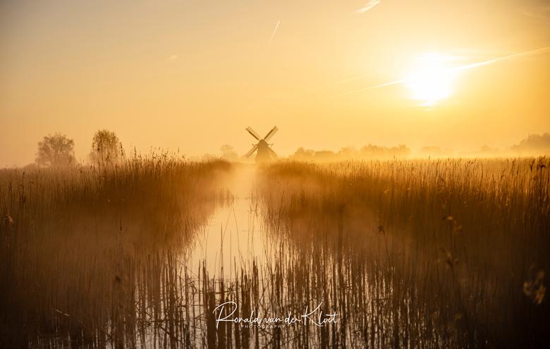 Gouden uur - Afgelopen zaterdagochtend om 5 uur de wekker gezet voor deze prachtige plaat. De mist brak mooi door en zonnetje gaf een mooie gele gloed