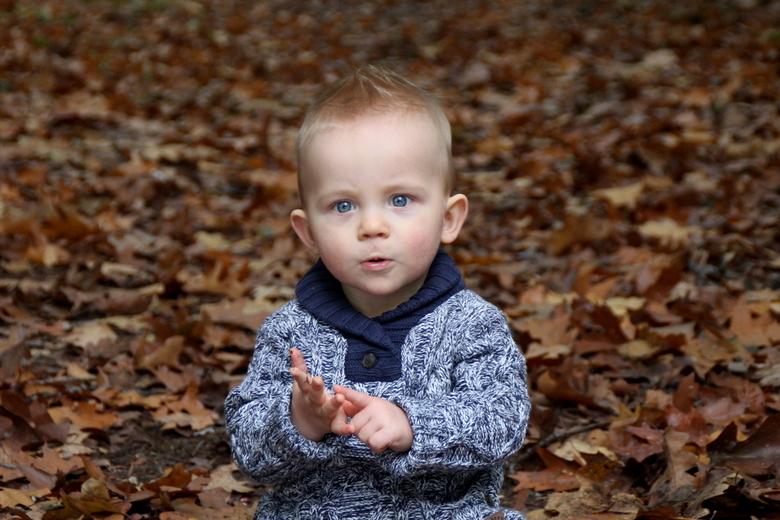 waarom? - Ik had dit jongentje voor de camera en zijn uitdrukkingen waren zo leuk! Voor ik deze foto nam zat hij blaadjes in zijn mond te stoppen wij