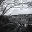 Charleroi - Charleroi - Terril Bayemont-Saint Charles I