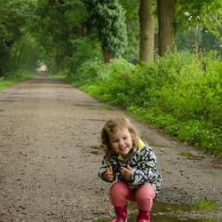 Regenachtig Drenthe