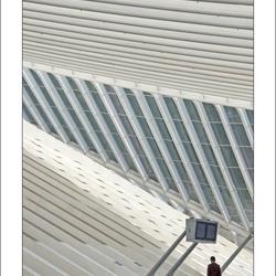 Calatrava - Station Luik-Guillemins (2)
